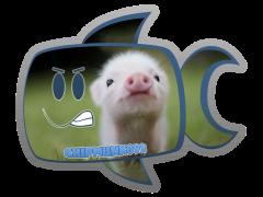 Chipmunk092